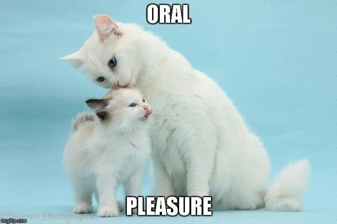 oral3.jpg