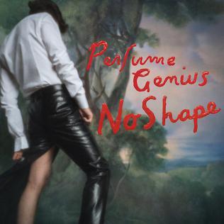 No_Shape-Perfume_Genius
